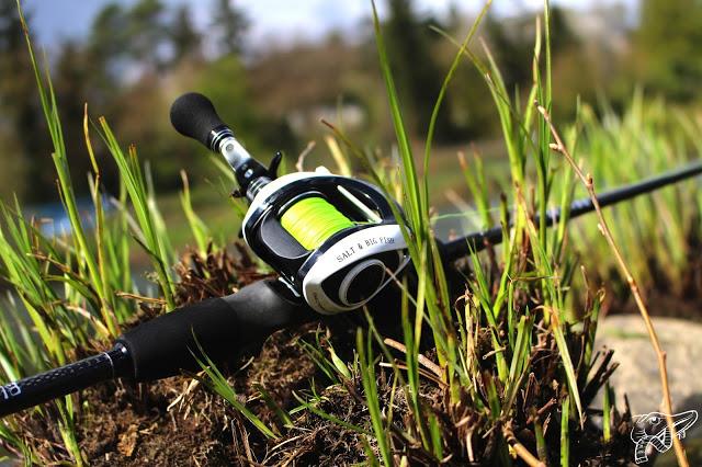 WFT Black Spear Jerkbaitrute und Salt & Big Fish Baitcastrolle – Testbericht
